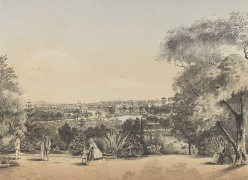 The Melbourne Album - Botanical Gardens (1863) (1864)