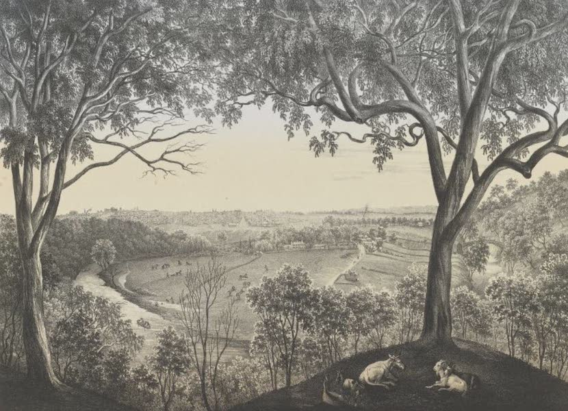 The Melbourne Album - View from Studley Park (1864) (1864)