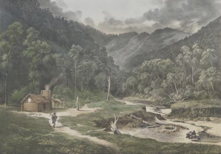 The Melbourne Album - Wentworth River Diggings, Gipps Land (1864)