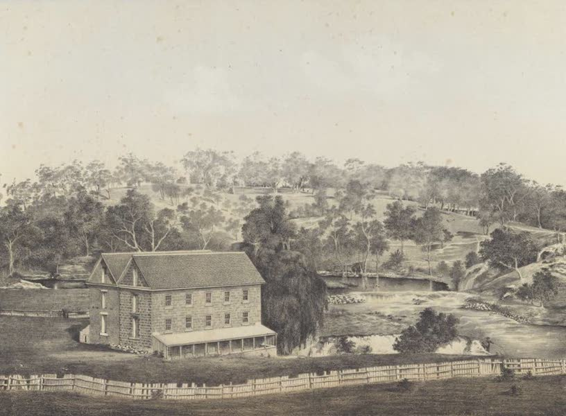 The Melbourne Album - Kenny's Mill (Late Dight's), Yarra Yarra Falls, 1863 (1864)