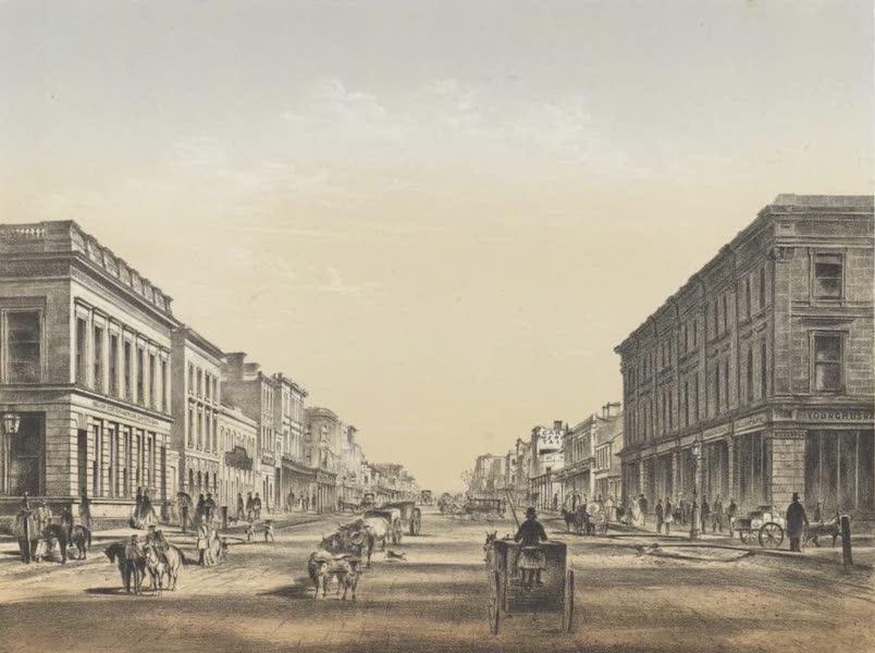 The Melbourne Album - Elizabeth Street (1864) (1864)