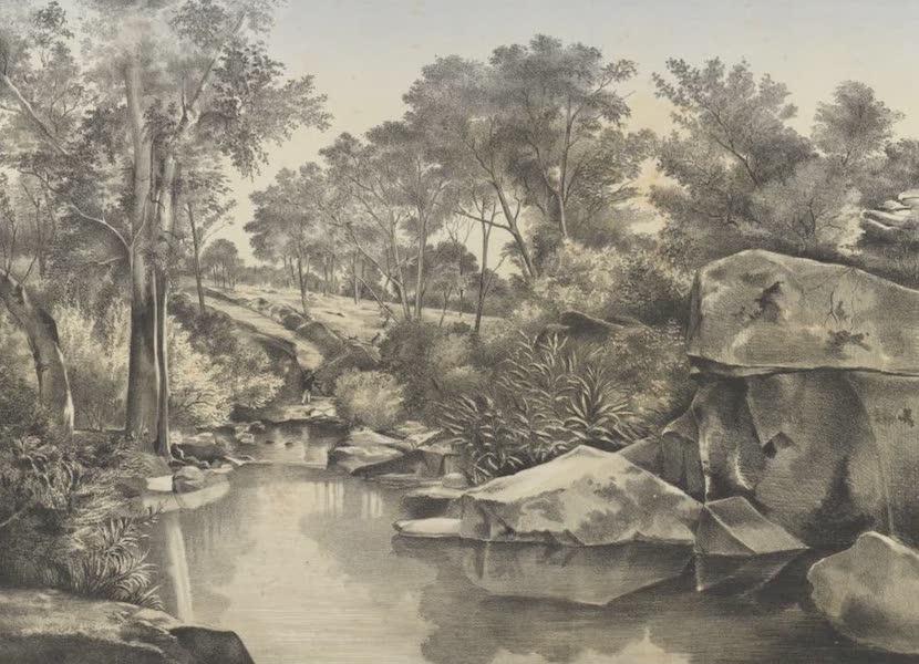 The Melbourne Album - Sheepwash Creek, near Sandhurst (1863) (1864)