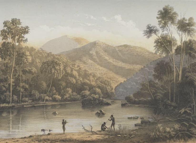 The Melbourne Album - View on the Upper Mitta Mitta (1864)