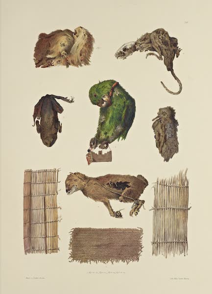 The Necropolis of Ancon Vol. 1 - Animals as sepulchral Offerings - Matting used at Burials (1880)