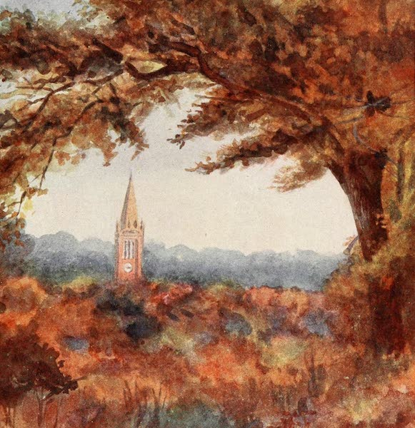 The New Forest Painted and Described - Lyndhurst Church from the Cut Walk. November (1904)