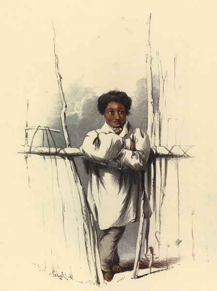 The New Zealanders Illustrated - Roperta of Kawhia (1847)