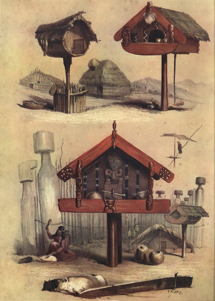 The New Zealanders Illustrated - Whatas, or Patukas, storehouses for food (1847)