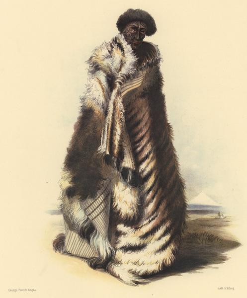 The New Zealanders Illustrated - Paratene Maioha, a chief of Waingaroa. Wearing the Parawal, or Dog's skin Robe (1847)