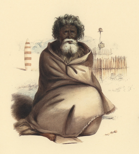 The New Zealanders Illustrated - Te Ohu, a Heathen Priest of the Ngatimaniapotp Tribe (1847)