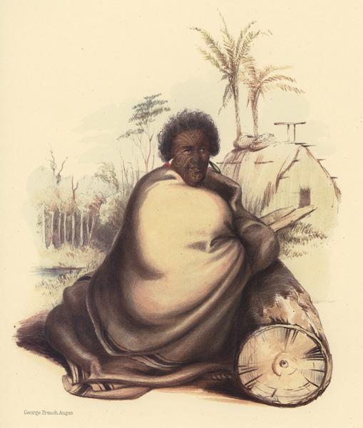 The New Zealanders Illustrated - Te Werowero, or Potatau. The principal chief of all Waikato (1847)