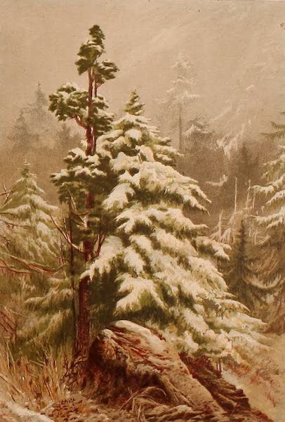 The Peaks & Valleys of the Alps - Winter (1868)
