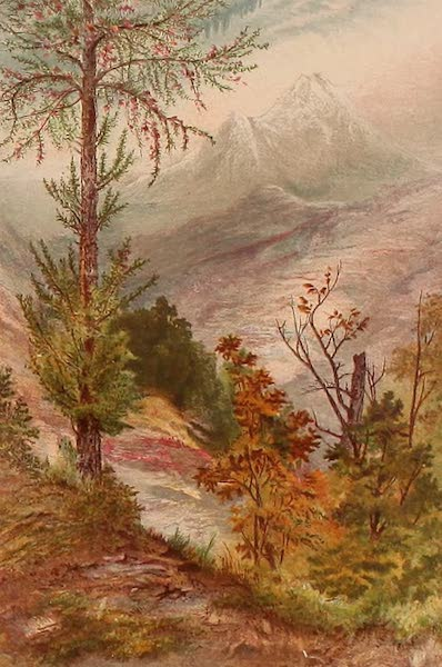 The Peaks & Valleys of the Alps - In the Valley of Aosta (1868)