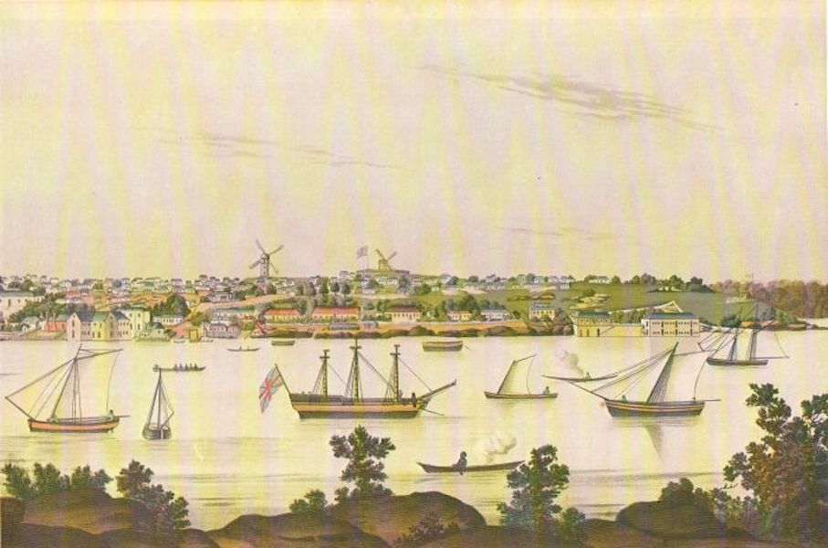The Present Picture of New South Wales - New South Wales, 1810. View of Sydney from the East Side of the Cove [II] (1811)