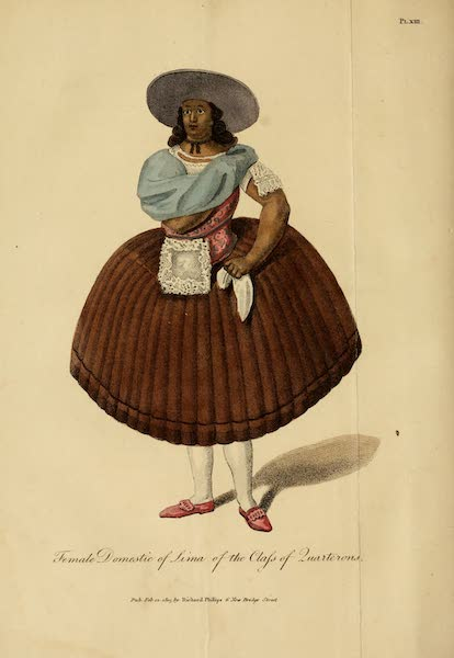 Female Domestic of Lima of the Class of Quaterrons
