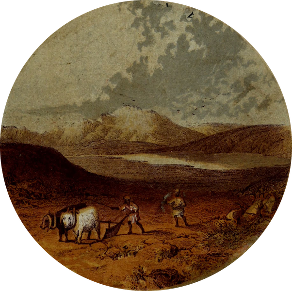 The River Jordan : Pictorial and Descriptive - Upper Plain of the Jordan (1858)
