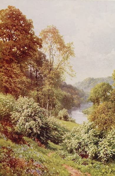 The Rivers and Streams of England Painted and Described - The Severn, near Arley, Shropshire (1909)