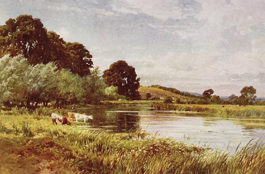 The Rivers and Streams of England Painted and Described - The Avon, near Salisbury (1909)