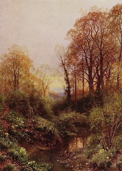 The Rivers and Streams of England Painted and Described - A Stream, near Leith Hill, Surrey (1909)