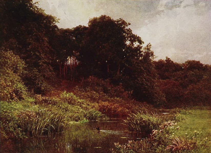 The Rivers and Streams of England Painted and Described - The Wey, Surrey (1909)
