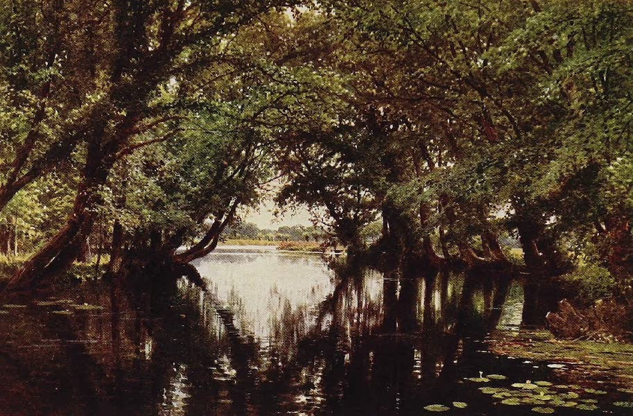 The Rivers and Streams of England Painted and Described - The Ouse, near St. Ives, Huntingdonshire (1909)