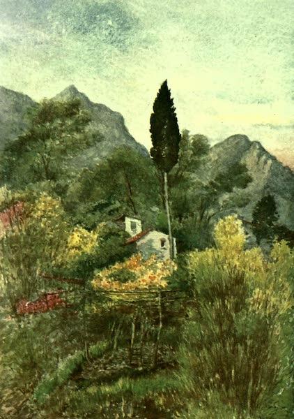 The Riviera Painted & Described - In the Borrigo Valley, Mentone (1907)