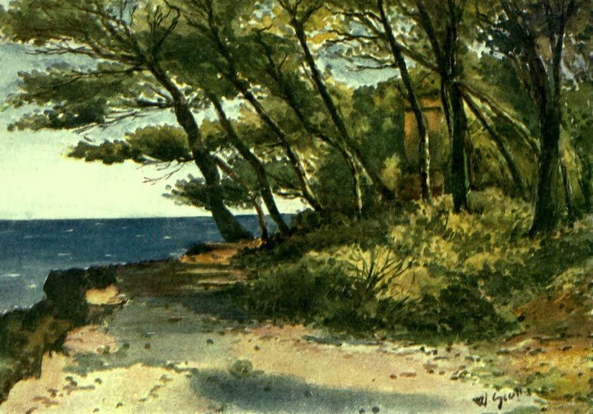 The Riviera Painted & Described - Cap Martin (1907)