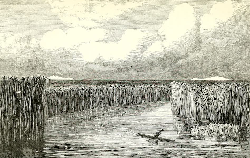 The Rob Roy on the Jordan - The New Found Mouth of Jordan (1869)