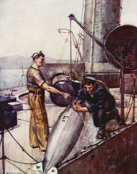The Royal Navy, Painted and Described - An 18-inch Whitehead Torpedo (1907)