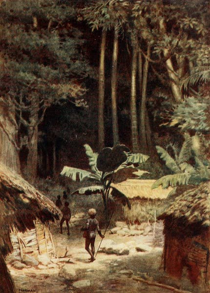 The Savage South Seas, Painted and Described - On the Fringe of a primaeval Forest, Solomon Islands (1907)
