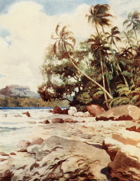 The Savage South Seas, Painted and Described - The Reef near Simbo, Solomon Islands (1907)