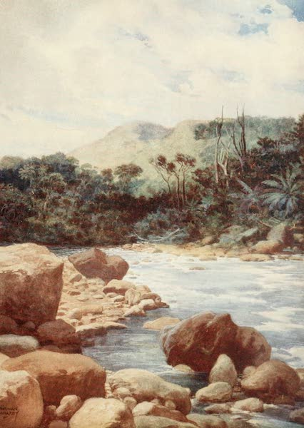 The Savage South Seas, Painted and Described - The Rapids, Williams River, Island of Eromanga, New Hebrides (1907)