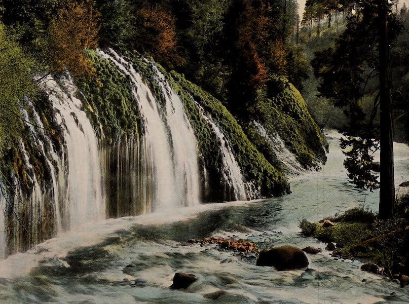 Mossbrae Falls at Shasta Springs
