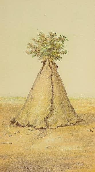 The Snake-Dance of the Moquis of Arizona - Sacred lodge (1884)