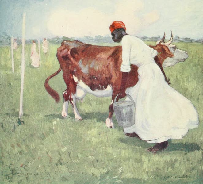 The West Indies, Painted and Described - A Milkmaid, Barbadoes (1905)