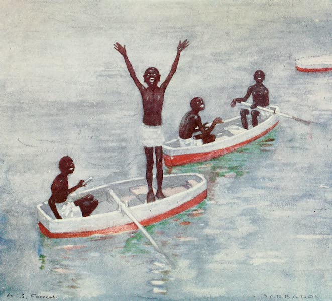 The West Indies, Painted and Described - Diving Boys, off Barbadoes (1905)