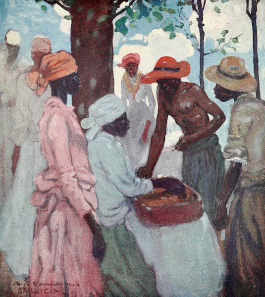 The West Indies, Painted and Described - A Gingerbread-seller, St. Lucia (1905)
