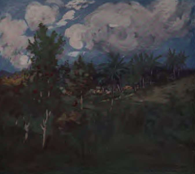 The West Indies, Painted and Described - A Tropical Landscape near Castleton (1905)