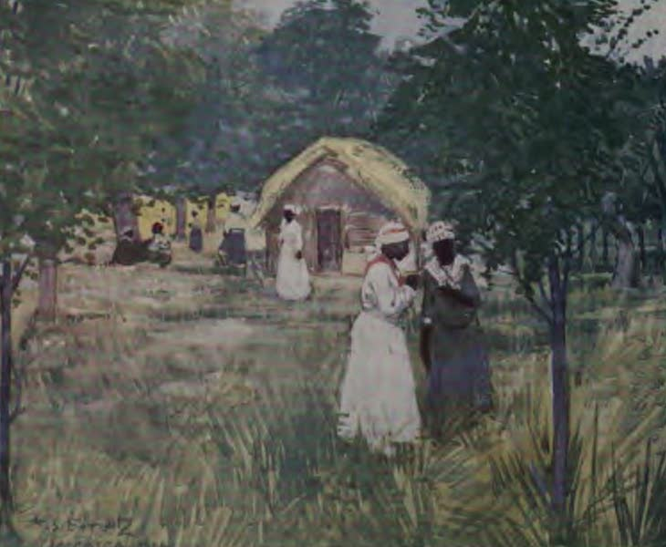The West Indies, Painted and Described - Hut on a Plantation, Jamaica (1905)