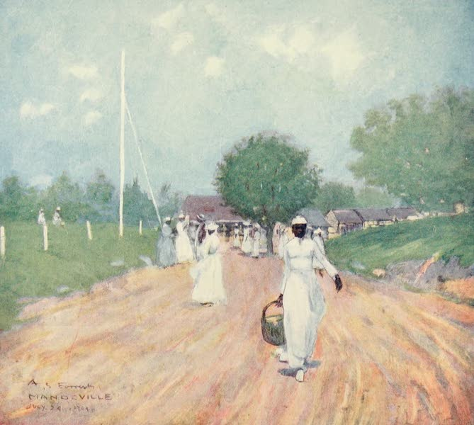 The West Indies, Painted and Described - A Road in Mandeville (1905)