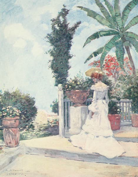 The West Indies, Painted and Described - A Garden Terrace, Jamaica (1905)