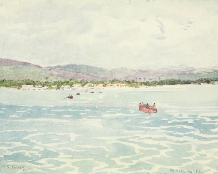 The West Indies, Painted and Described - Black River, Jamaica (1905)