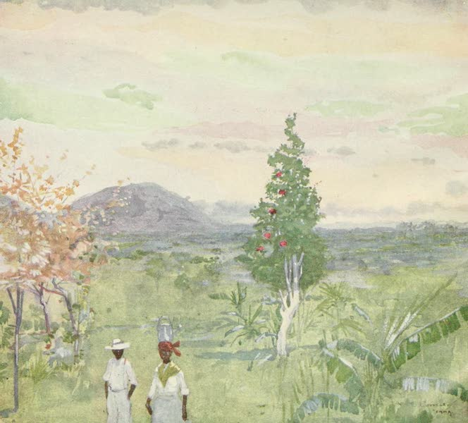 The West Indies, Painted and Described - Evening after Rain, Jamaica (1905)