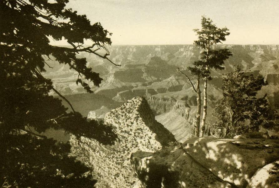Three Wonderlands of the American West - Near El Tovar, Grand Canyon (1912)
