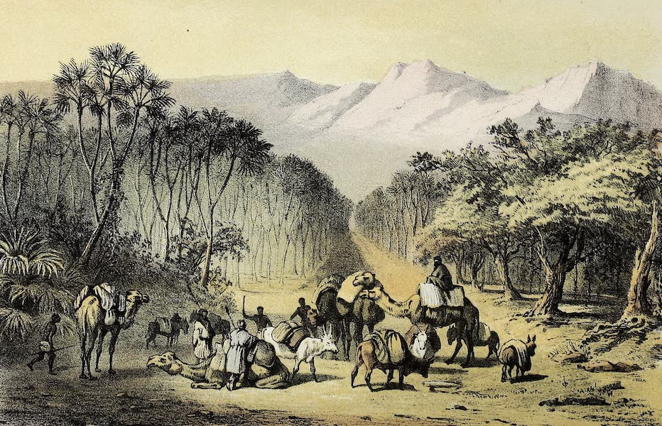 Travels and Discoveries in North and Central Africa Vol. 1 - Auderas (1857)