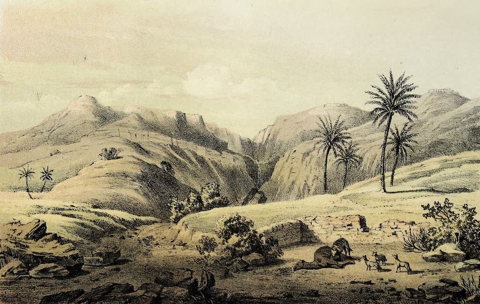 Travels and Discoveries in North and Central Africa Vol. 1 - Wadi Welad 'Ali (1857)