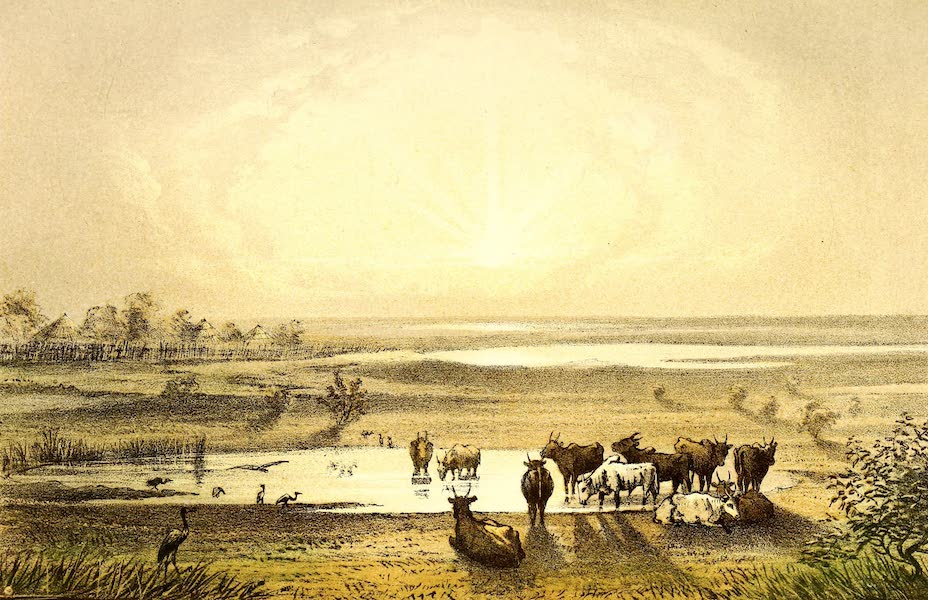 Travels and Discoveries in North and Central Africa Vol. 2 - Shores of Lake Tsad (1857)
