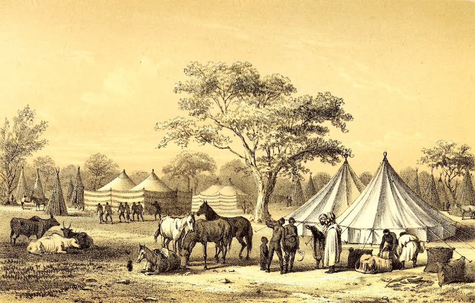 Travels and Discoveries in North and Central Africa Vol. 3 - Landscape of the Musgu Country (1857)