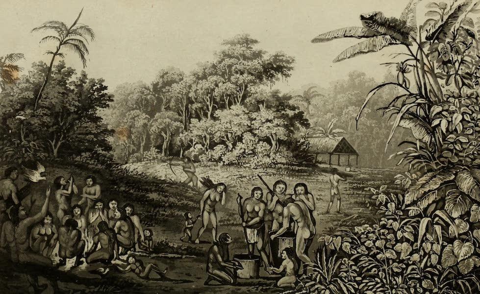 Travels in Brazil Vol. 2 - Village of the Coroados (1824)