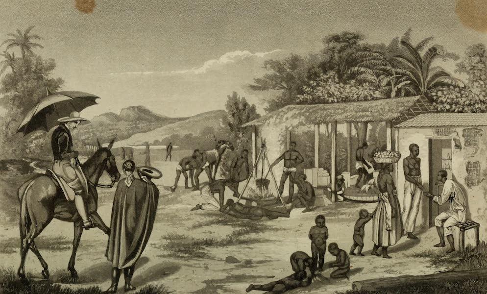 Travels in Brazil Vol. 2 - Rancho near the Serra do Caraca (1824)