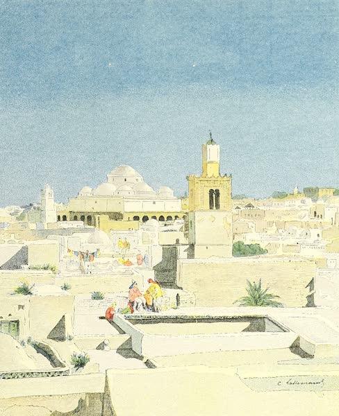 Tunis la blanche - sur les Terrasses